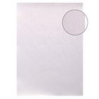 """Бумага """"Цветник на жемчужном фоне"""", набор 20 листов, формат А4, плотность 120 г"""