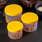 """A set of jars bulk for """"Chrysanthemum"""", 3 PCs: 11×9/10×7,5/9×7 cm, MIX color"""