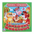 Книжка-гармошка «Домашние животные», 195х195 мм