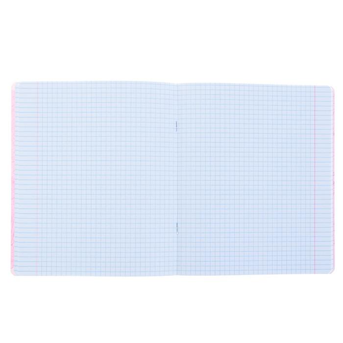 Тетрадь 48 листов клетка «Яркое настроение», обложка мелованный картон, матовая ламинация, ламинация Soft Touch, фольгирование, МИКС - фото 366921023
