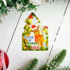 """Magnet """"Money big and small"""" symbol of the year, Christmas paraphernalia, 7.5 x 6.3 cm"""
