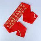 Лента на капот «Свадьба» с резинками, шёлк, 150 × 15 см, красная