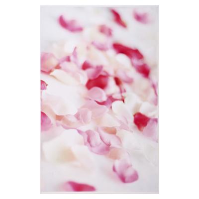 """Фотофон винил """"Лепестки роз"""" 125х80 см"""