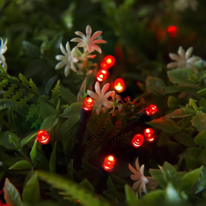 """Гирлянда """"Нить"""" 20 м, тёмная нить, 200 LED, свечение красное, 2 режима, солнечная батарея - фото 7413956"""