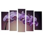 """Картина модульная на подрамнике """"Розовая орхидея"""" 125х80 см(2-25х63, 2-25х70, 1-25х80)"""