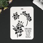 """Трафарет пластик """"Орхидеи-символ благородства"""" 31х22 см"""