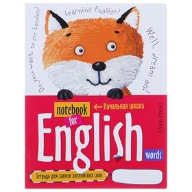 Тетрадь для записи английских слов, 24 листа «Лисёнок»,, обложка мелованный картон, глянцевая ламинация, ляссе