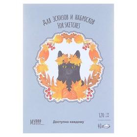 Планшет для эскизов и зарисовок А5, 40 листов «Времена кошек. Осень», блок 120 г/м² Ош