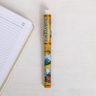 Ручка сувенирная «Смоленск», 12,6  х 1,1 см