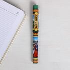 Ручка сувенирная «Кавказ», 12,6  х 1,1 см