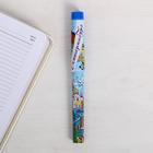 """Pen gift """"Yekaterinburg"""", 12.6 x 1.1 cm"""
