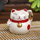 """Piggy Bank ceramic """"Maneki-neko kanji happiness"""" 7,5х7х7 cm"""