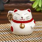 "Piggy Bank ceramic ""Maneki-neko kanji destiny"" 7,5х7х7 cm"