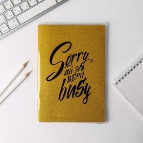Блокнот в PVC обложке Sorry, ай эм вери busy, + кармашек для мелочей, формат A5, 20 листов
