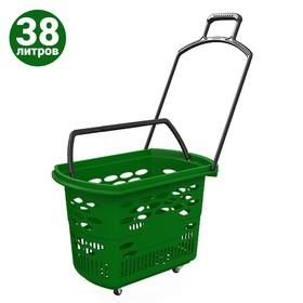 Корзина-тележка на 4 колесах пластиковая, 38 л, с 2 пластиковыми ручками, цвет зелёный Ош