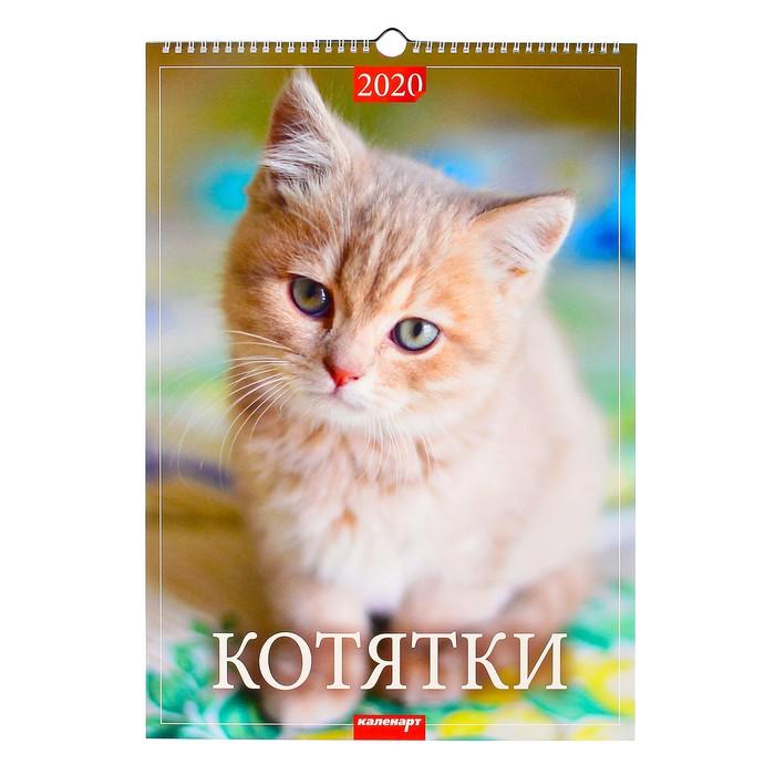 """Календарь перекидной, ригель """"Котятки"""" 2020, 34 х 49 см"""