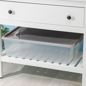 Контейнер для хранения с крышкой Porter, 32 л, 65,9×41,6×17,5 см, цвет дымчато-серый