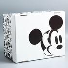 Складная коробка, Микки Маус, 30,5 х 24,5 х 16,5