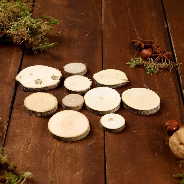 Набор срезов липы, диаметр 3,5 см, 10 штук