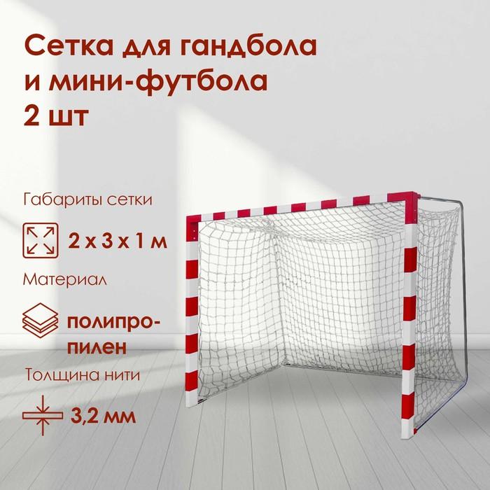 Сетка для гандбола/мини-футбола, нить 2,2 мм, ячейки 100 х 100, 2 шт., цвет белый/синий