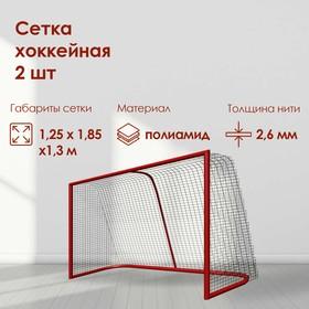 Сетка для хоккея, нить 2,6 мм, ячейка 40 х 40 мм, цвет белый, набор 2 шт.