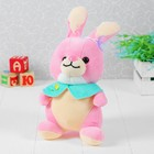 "Soft toy ""Rabbit in a waistcoat"" color pink"