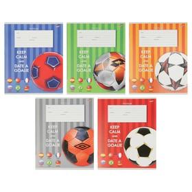 Тетрадь 12 листов в клетку «Яркие мячи», обложка мелованная бумага, МИКС