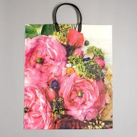 Bastet bag, polyethylene with plastic handle, 38x45 cm, 100 microns
