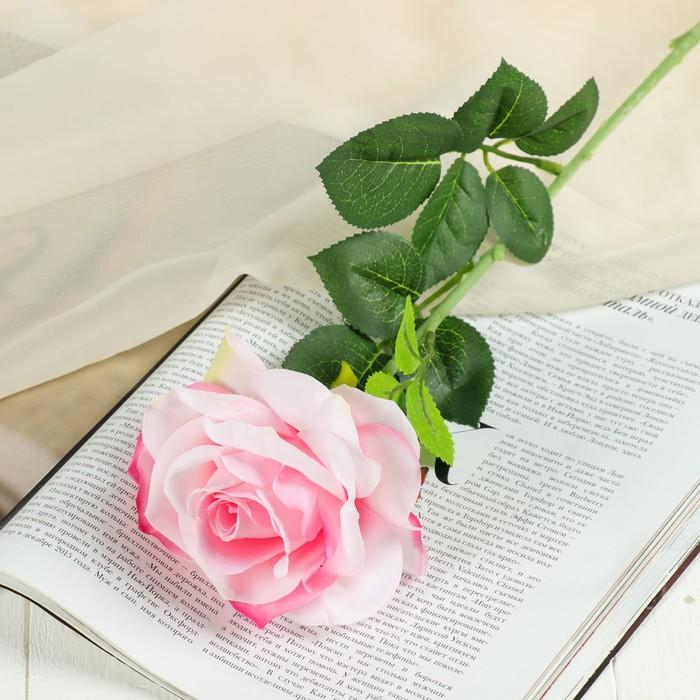 """Цветы искусственные """"Роза ариозо"""" 10*55 см, розовая"""
