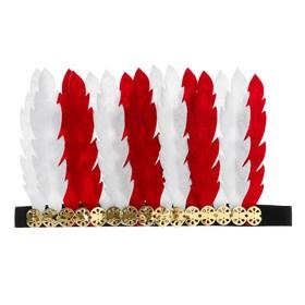 Карнавальный головной убор «Перья», цвет бело-красный Ош