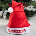 Колпак Деда Мороза «Весело тут у вас», 19 × 27 см