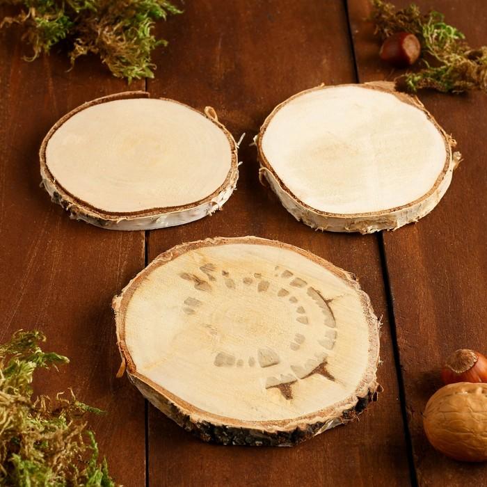 Набор спилов берёзы, диаметр 9-11 см, 3 шт