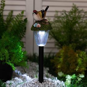 """Светильник садовый на солнечных батареях TDM СП """"Птицы"""", пластик, меняет цвет"""