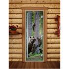 Дверь «Престиж» с фотопечатью, размер коробки 190 × 70 см, правая, цвет А064
