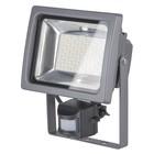 Прожектор светодиодный 003 FL, 30 Вт, 6500К, LED, цвет серый, IP44