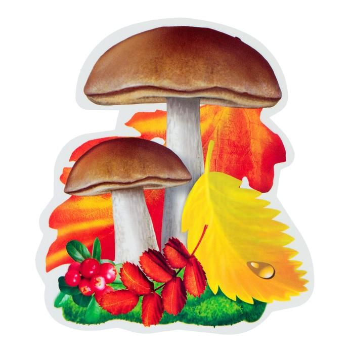 Цветами, красивые картинки грибов для детей