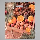 """Пакет """"Ящик с орешками"""", полиэтиленовый с вырубной ручкой, 45 х 38 см, 60 мкм - фото 308292011"""