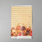 """Пакет подарочный """"Сибирский набор"""", 25 х 40 см - фото 308289502"""