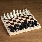 Plastic chess pieces (king, h=6.2 cm, pawn 3cm)