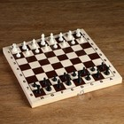 Plastic chess figures (king of the h=4.2 cm, pawn 2.cm)
