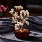 "Souvenir bonsai ""Pearl money tree"" 60 PCs MIX 16,5х10х5,5 cm"