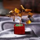 "Souvenir ""bonsai Money tree with a tiger crystals"" 12 PCs 8х3х3,2 cm"