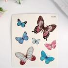 "Татуировка на тело цветная ""Бабочки"" 12х10,5 см"