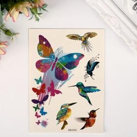 """Татуировка на тело цветная с блёстками """"Бабочки и птицы"""" 14,8х10,5 см"""