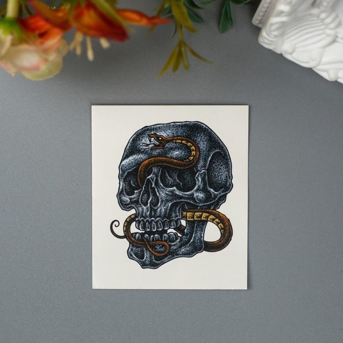 """Татуировка на тело """"Череп и змея"""""""