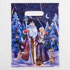 Пакет «Дед мороз», полиэтиленовый с вырубной ручкой, 22,5 х 29,5 см, 30 мкм - фото 308983674