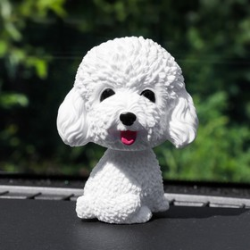 The dog on the dashboard of the car, shakes his head, poodle