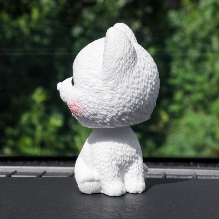 Собака на панель авто, качающая головой, шпиц