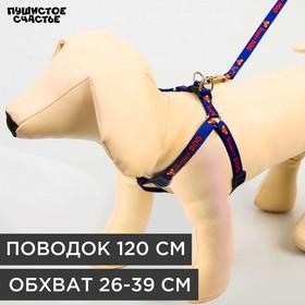 Комплект Super Dog: шлейка 28-47 см, поводок 120 см, макс вес 10 кг