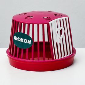 Переноска мини пластиковая для мелких грызунов (без наполнения), 16 х 16 х 12 см, микс
